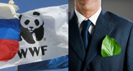 <p>Корпоративный  клуб WWF &#8212; Panda Business  Club</p>